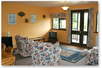Lodge - Sitting Room